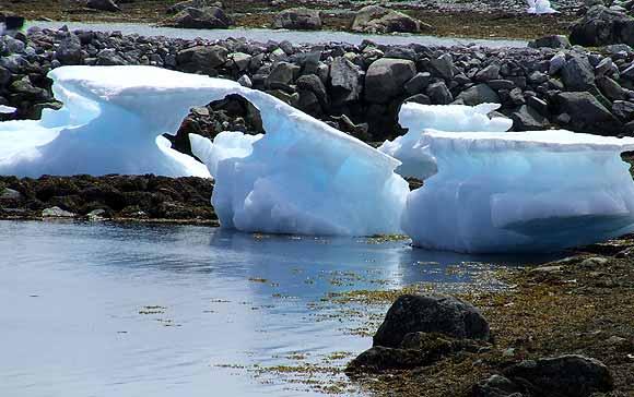 Arkivfoto af Peter C.D. Madsen: Smeltende isbjerge (Grønland)