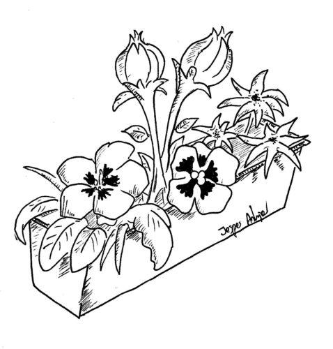 Blomster fyld