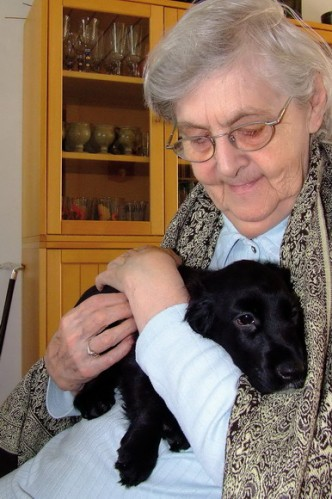 Man kan altid glæde sig. F.eks. over et besøg fra en lille hund.