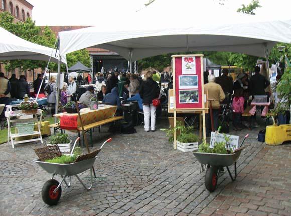 Haveforeningen Grønærten var med på festival med  trillebøre fyldt med afgrøder