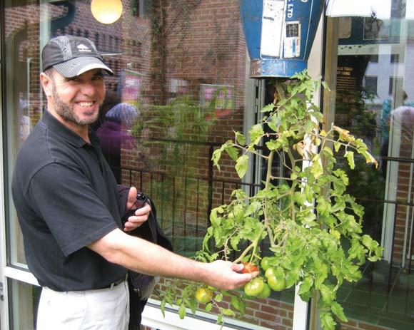 Jamal fra Grønærten vil meget gerne have tomaterne med hjem