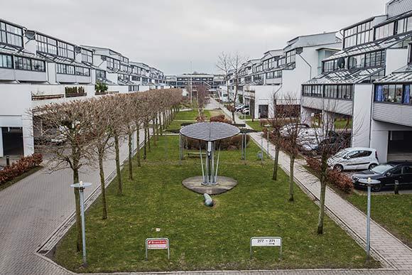 Bladet og bønnen, som her ses i forgrunden, er det første, der møder synet, når man kommer ind i Holmstrup.