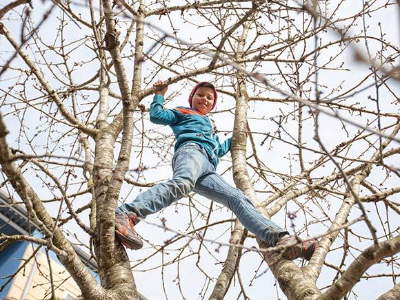 Jonas Ben Abdallah på ti år er glad for Odinsgårds kirsebærtræer, som er gode at klatre i  - også om foråret.