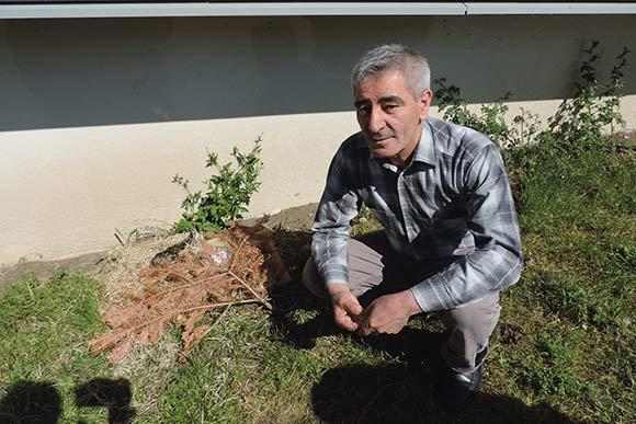 Mustafa Yildiz ved siden af andereden, som han passer godt på.