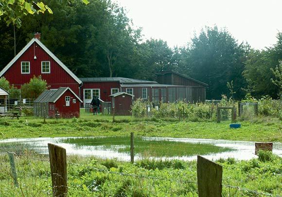 Naturplejecenteret ved den gamle lystgård Sølyst er åben for alle, der har lyst til at nyde omgivelserne, og det er meget børnevenligt.