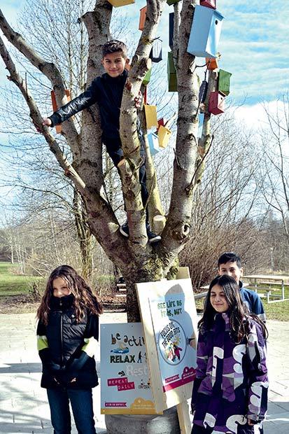 Adam kravlede hurtigt op i træet, mens Jasmin, Hala og Mohammad blev på jorden