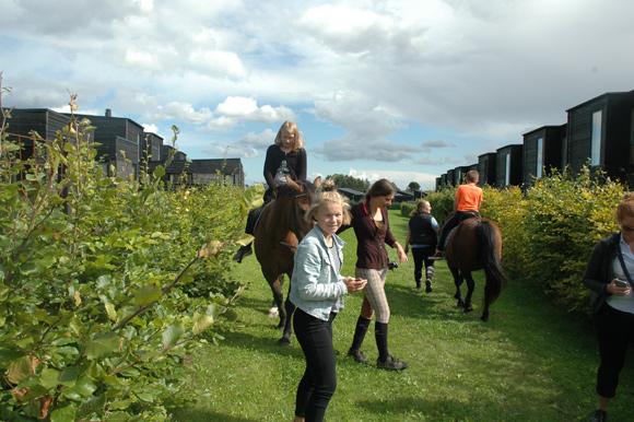 Forsiden: Sommerfesten i Østergårdsparken blev blandt andet fejret med rideture for børnene. Fotos af Festudvalget.