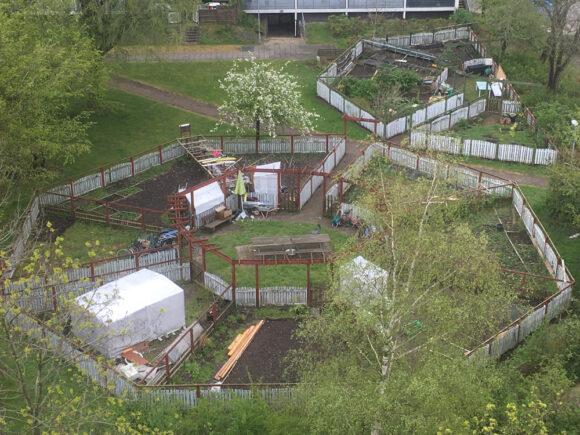 Grønærtens runde haver på Gudrunsvej blev anlagt midt i 1980'erne.